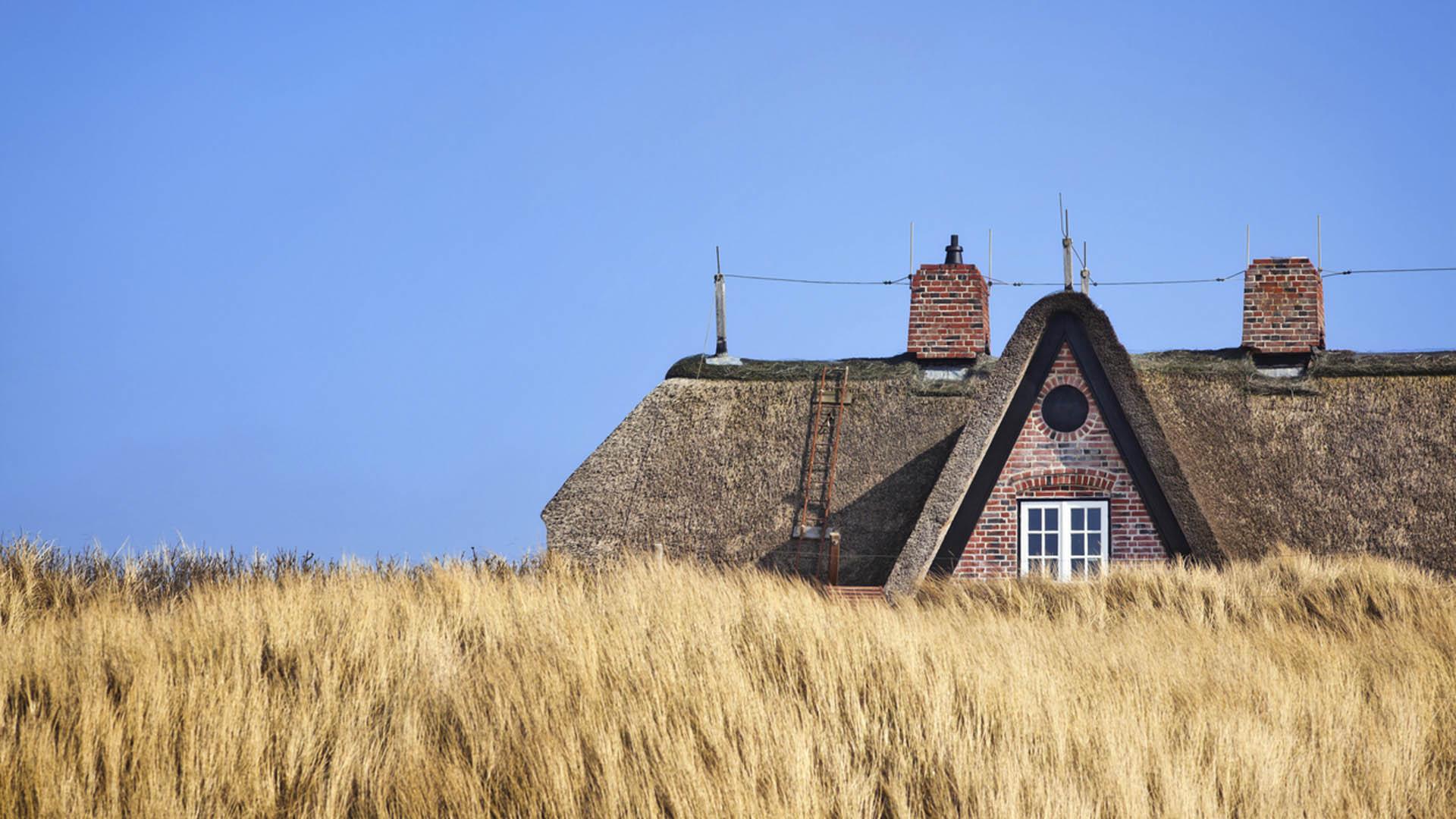 Hanne-rieten dak