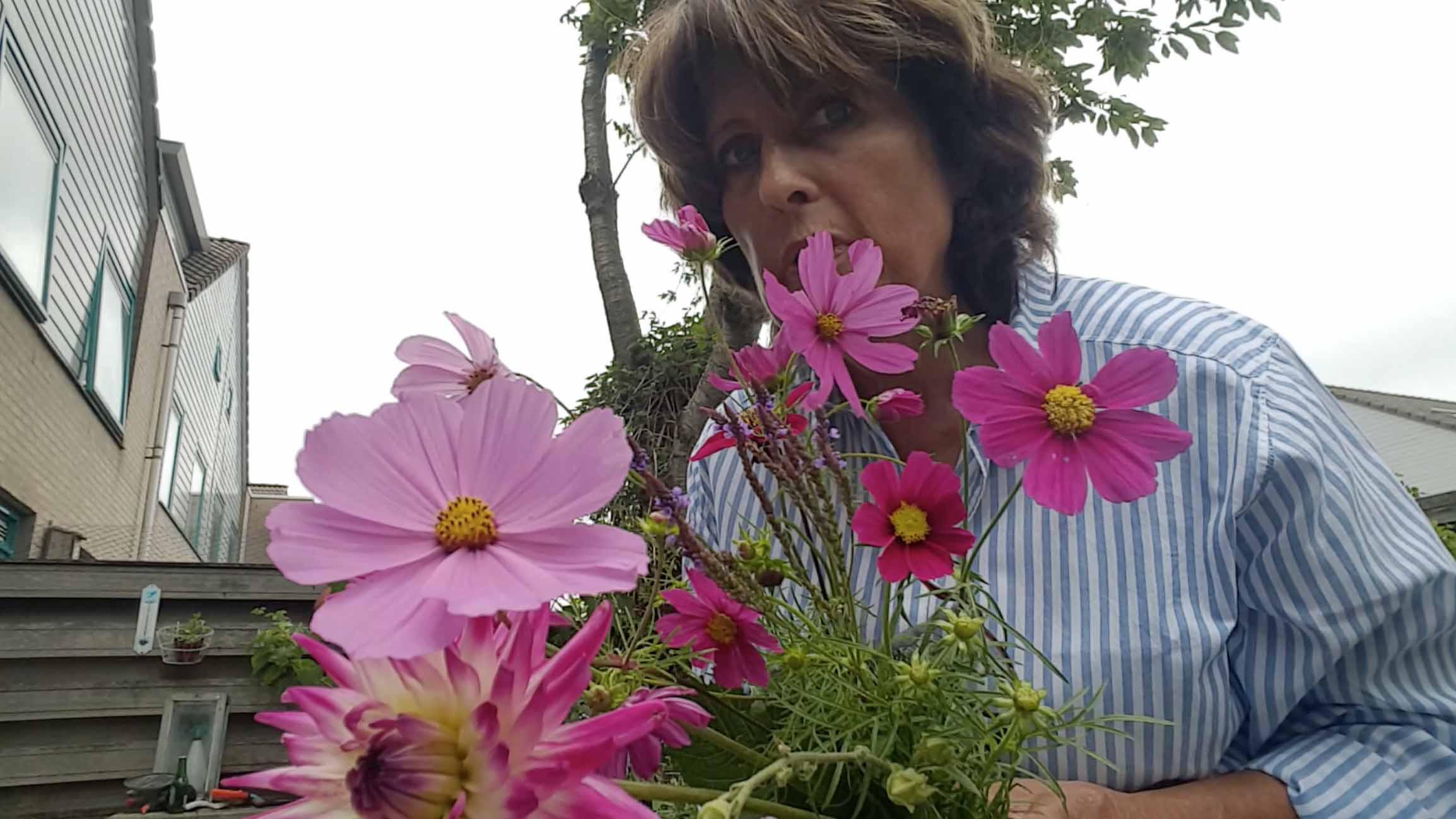 Loes uitgebloeide bloemen